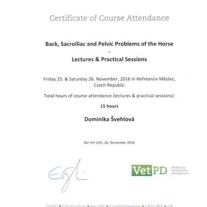 zdravotní problematika hřbetu a pánve koní